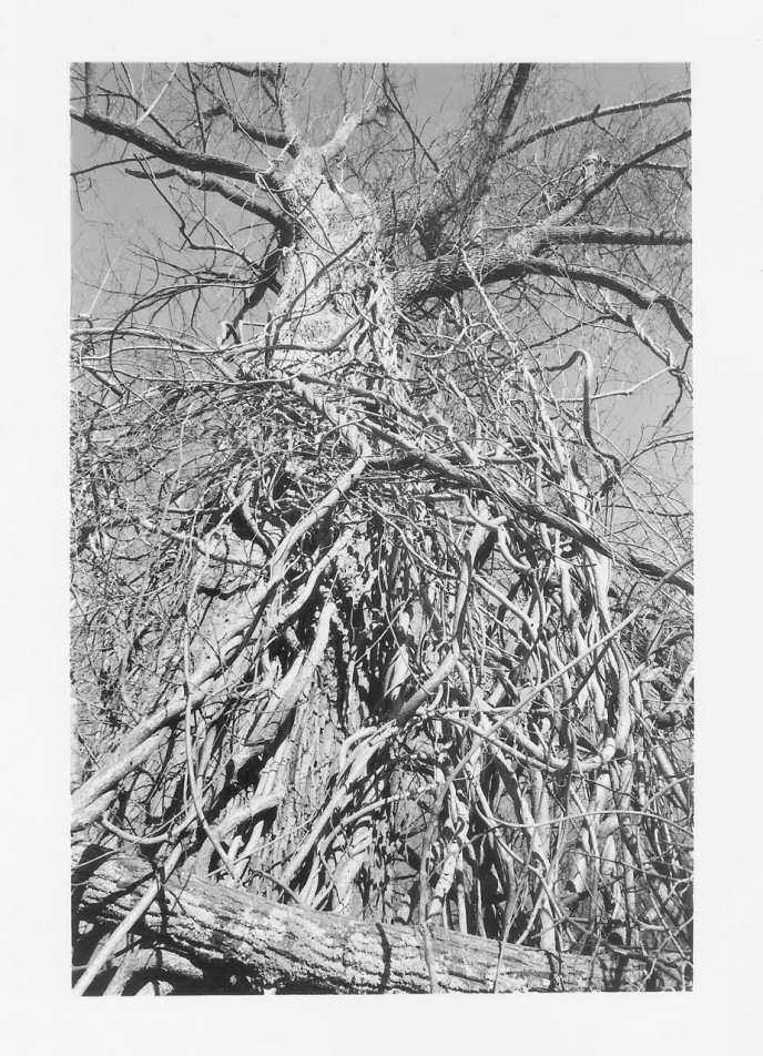 Salisbury, Connecticut. 